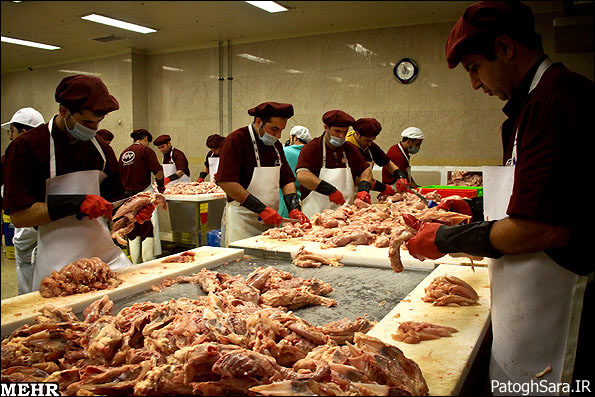 تولید سوسیس ( گزارش تصویری )